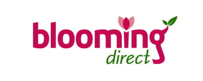 Кэшбэк Blooming Direct